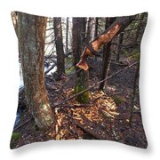 Beaver Marks Throw Pillow