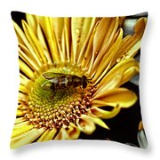 Bee Throw Pillow by Kelly Rader