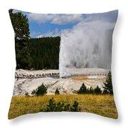 Beehive Geyser Throw Pillow