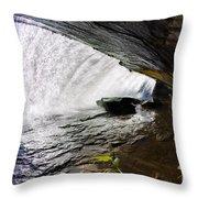 Behind Bridal Veil Falls In Dupont State Park Nc Throw Pillow