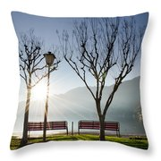 Bench And Trees Throw Pillow