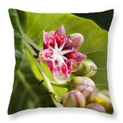 Berry Blossom Throw Pillow
