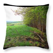Between Here And There Throw Pillow