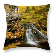 Beulach Ban Falls, Cape Breton Throw Pillow