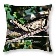 Big Grass Hopper Throw Pillow