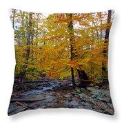 Big Hunting Creek Down Stream From Cunningham Falls Throw Pillow