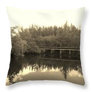 Big Sky On The North Fork River In Sepia Throw Pillow
