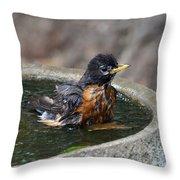 Bird Bath Fun Time Throw Pillow