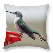 Birds And Bee's Throw Pillow