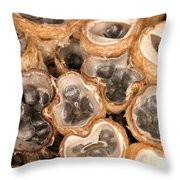 Birds Nest Fungus Throw Pillow