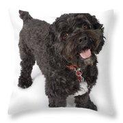 Black Bichon-cocker Spaniel Dog Throw Pillow
