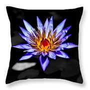 Black Pond Lilly Throw Pillow