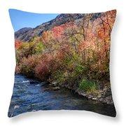 Blacksmith Fork River In The Fall - Utah Throw Pillow
