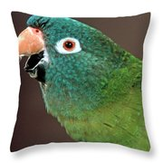Blue Crowned Conure Throw Pillow