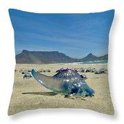 Bluebottle Throw Pillow