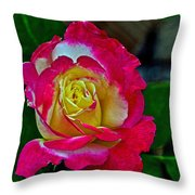Blushing Rose Throw Pillow