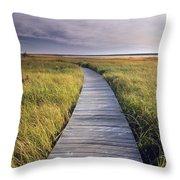 Boardwalk Along The Salt Marsh Throw Pillow