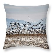 Bombay Beach Birds Throw Pillow