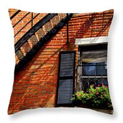 Boston House Fragment Throw Pillow