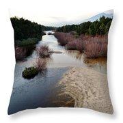Breede River Throw Pillow