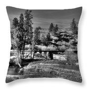 Bridge Over A Creek  Throw Pillow