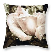 Bring May Flowers Throw Pillow