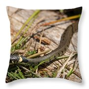 British Grass Snake Throw Pillow