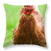 Brown Hen On A Lawn Throw Pillow