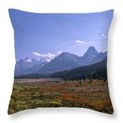 Bugaboo Valley Throw Pillow