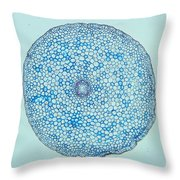Buttercup Root Section Throw Pillow by M. I. Walker