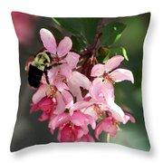 Buzzing Beauty Throw Pillow