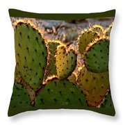 Cactus Heart In Sunset Throw Pillow