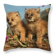 Canadian Lynx Kittens, Alaska Throw Pillow