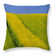 Canola Field, Darlington, Prince Edward Throw Pillow
