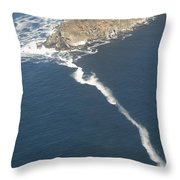 Cape Point, The Dividing Point Throw Pillow