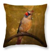 Cardinal II Throw Pillow