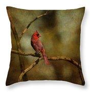 Cardinal IIi Throw Pillow