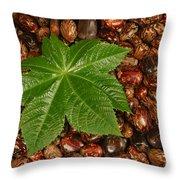 Castor Bean Leaf And Seeds Throw Pillow