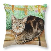 Cat Commission Sample Throw Pillow