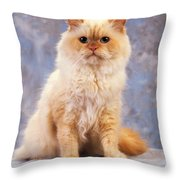 Cat Portrait Of A Cat Throw Pillow