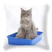 Cat Using Litter Tray Throw Pillow