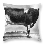 Cattle, 19th Century Throw Pillow