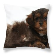 Cavapoo Pup And Shaggy Guinea Pig Throw Pillow