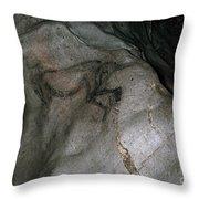 Cave Art: Sorcerer Throw Pillow