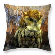 Cavern Watch Throw Pillow