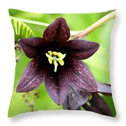 Chocolate Lilly Throw Pillow