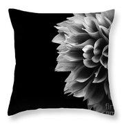 Chrysanthemum In Black And White Throw Pillow