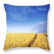 Co Carlow, Ireland Barley Throw Pillow