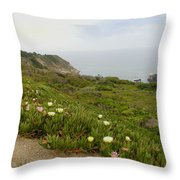 Coastal View Mist Throw Pillow