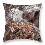 Coffee Grounds 2 Throw Pillow